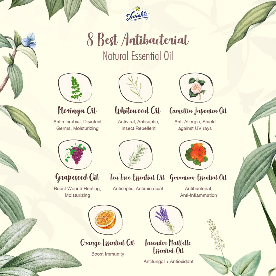 8 best Antibacterial Natural Essential Oil